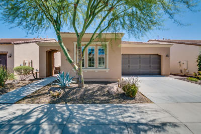San Tan Valley Single Family Home For Sale: 1791 E Tangelo Place