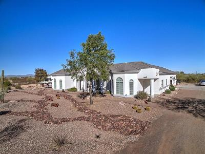 Wittmann Single Family Home For Sale: 22636 W Desert Vista Trail