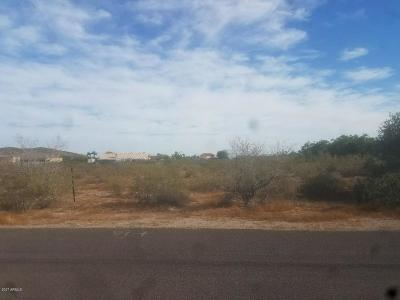 Peoria Residential Lots & Land For Sale: W Avenida Del Sol