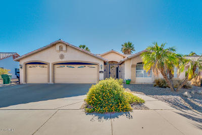 Mesa Single Family Home For Sale: 3120 N 64th Street