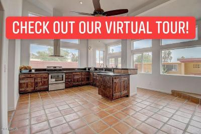 Phoenix Single Family Home For Sale: 1249 E Desert Park Lane E