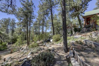 Prescott Single Family Home For Sale: 4886 S Juniper Loop Road