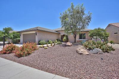 Buckeye Single Family Home For Sale: 27069 W Ross Avenue