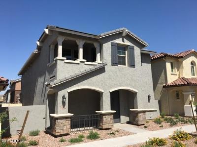 Gilbert Single Family Home For Sale: 3687 E Perkinsville Street