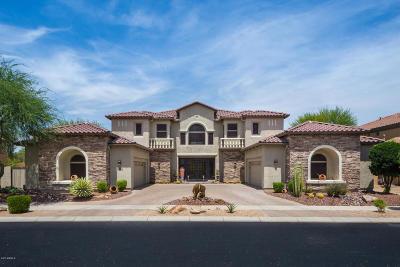Phoenix Single Family Home For Sale: 1828 W Calle De Pompas