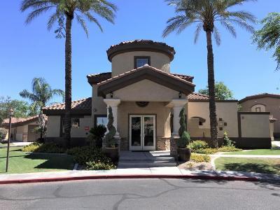 Apartment For Sale: 10136 E Southern Avenue #1052