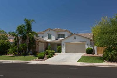 Chandler Single Family Home For Sale: 480 E Alamosa Drive