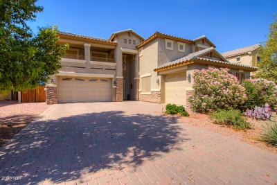 Casa Grande Single Family Home For Sale: 1332 E Prickly Pear Drive