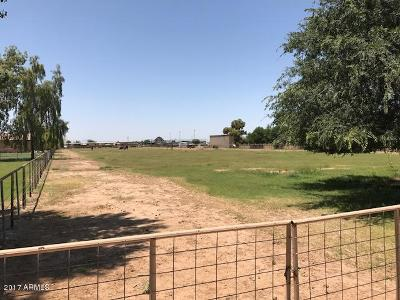 Gilbert Residential Lots & Land For Sale: 21821 S Val Vista Road