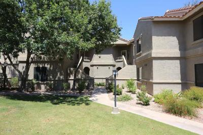 Apartment For Sale: 15380 N 100th Street #2131