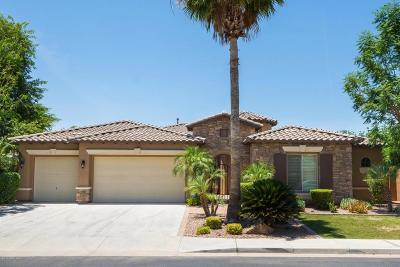 Chandler Single Family Home For Sale: 5204 S San Juan Place