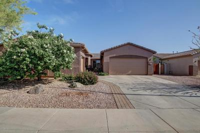 Chandler Single Family Home For Sale: 3337 E Blue Ridge Place