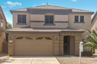 Queen Creek Single Family Home For Sale: 22237 E Via Del Palo Drive