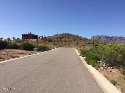 El Mirador At Superstition Mountain, Elevated Acreage, Gold Canyon East, Gold Canyon Estates, Golden Springs, Mesa Del Oro, Pasion, Quail Canyon, Superstition Mountain, Superstition Mountain - Petroglyph Estates, Vista Del Corazon Residential Lots & Land For Sale: 3939 S Veronica Lane