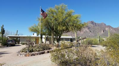 Apache Junction Single Family Home For Sale: 4532 E Superstition Boulevard