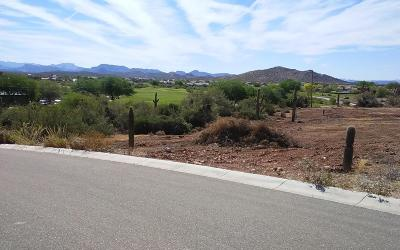 Gold Canyon Residential Lots & Land For Sale: 4009 S Veronica