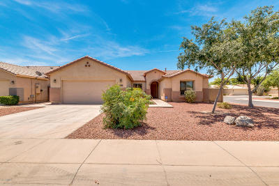 San Tan Valley Rental For Rent: 3847 E Stratford Place