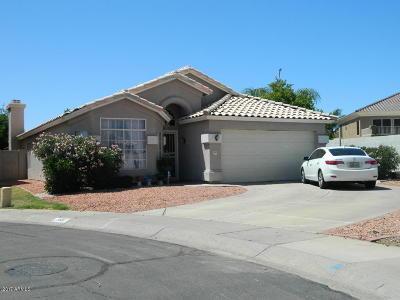 Single Family Home For Sale: 165 W Merrill Avenue