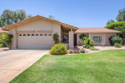 Mesa Single Family Home For Sale: 1164 Leisure World