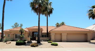 Sun City Single Family Home For Sale: 14101 W Via Tercero