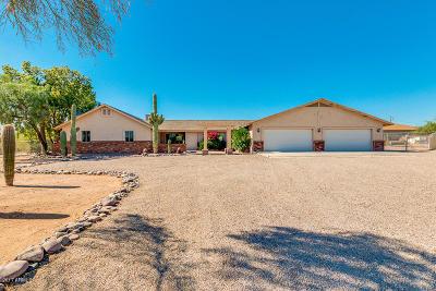 Mesa Single Family Home For Sale: 7850 E Mawson Road