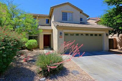 Carefree, Cave Creek Single Family Home For Sale: 4757 E Amber Sun Drive