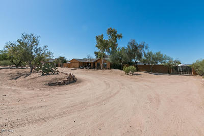 Maricopa County, Pinal County Single Family Home For Sale: 1106 E Cloud Road