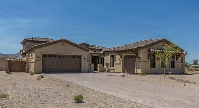 Fountain Hills Single Family Home For Sale: 11208 N Indigo Drive