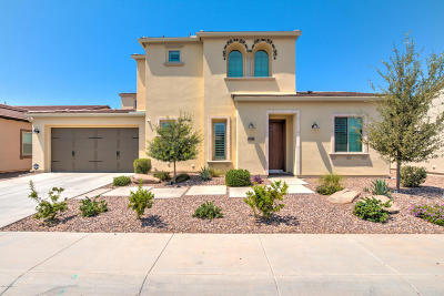 San Tan Valley AZ Single Family Home For Sale: $799,900