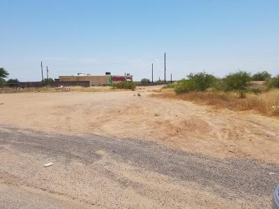 San Tan Valley Residential Lots & Land For Sale: 5621 E Preakness Drive