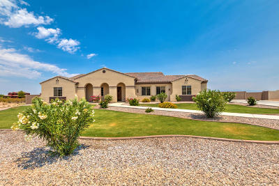 Queen Creek Single Family Home For Sale: 2042 W Laurie Lane
