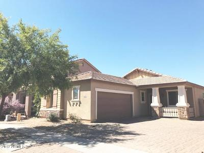 Gilbert Single Family Home For Sale: 1940 S Falcon Drive