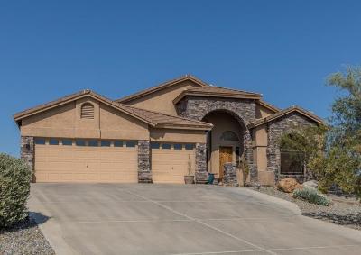 Single Family Home UCB (Under Contract-Backups): 6110 E Desert Vista Trail