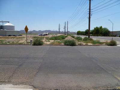 Goodyear Residential Lots & Land For Sale: 4239 S Sarival Avenue