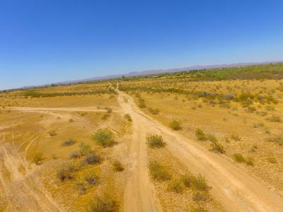Residential Lots & Land For Sale: 301xx W Lone Mountain Road