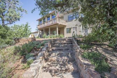 Payson Single Family Home For Sale: 1119 N Alpine Heights Drive