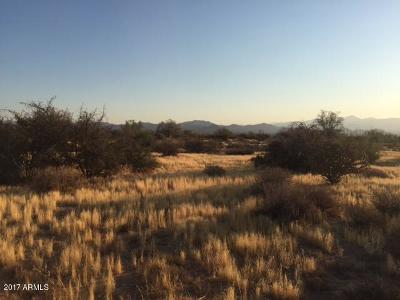 Rio Verde Residential Lots & Land For Sale: 290xx N 171st Street
