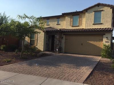 Phoenix Single Family Home For Sale: 2533 W Brisa Drive