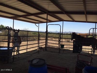 Wickenburg Single Family Home For Sale: 35100 S Nine Iron Ranch Road