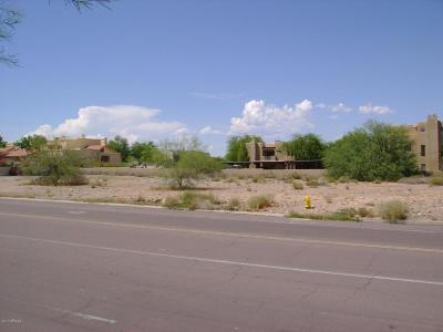 Fountain Hills Residential Lots & Land For Sale: 12310 N Saguaro Boulevard