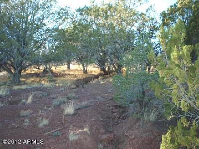 Williams AZ Residential Lots & Land For Sale: $42,500