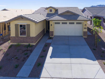 Buckeye Single Family Home For Sale: 20687 W Colina Court