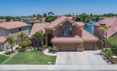 Gilbert Single Family Home For Sale: 1341 N Mission Cove Lane