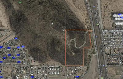 Residential Lots & Land For Sale: 22643 N Black Canyon Highway