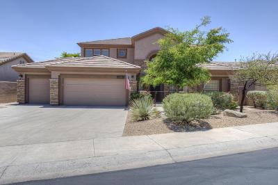 Single Family Home For Sale: 15019 E Vermillion Drive