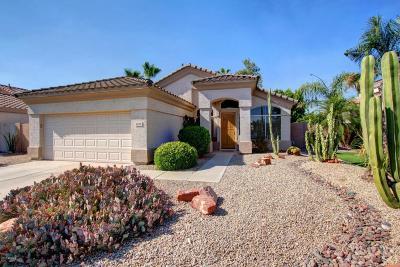 Glendale Single Family Home For Sale: 6219 W Irma Lane