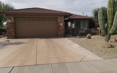 Surprise Single Family Home For Sale: 20228 N Esperero Lane