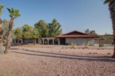 Fountain Hills Single Family Home For Sale: 16529 E Nicklaus Drive