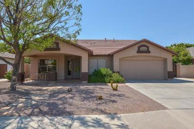 Glendale Single Family Home For Sale: 6403 W Kristal Way