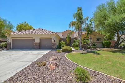 Surprise Single Family Home For Sale: 15325 W Desert Mirage Drive